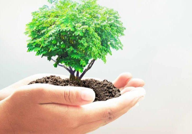 desarrollososteniblefinal-1